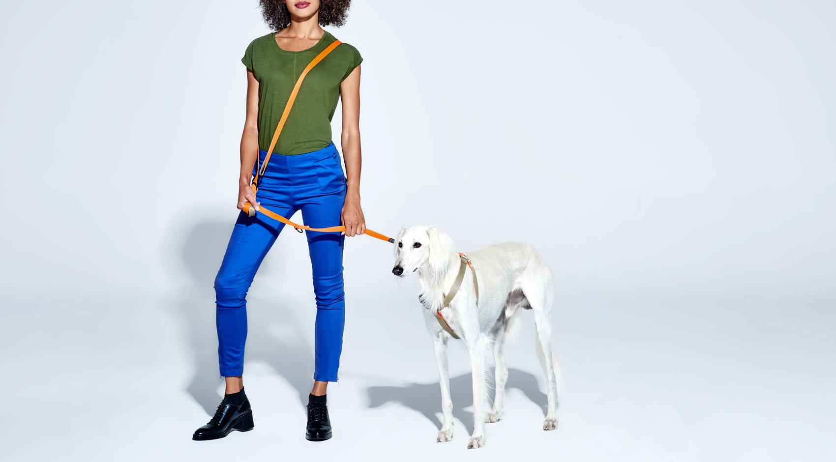 smycz regulowana przepinana dla psa